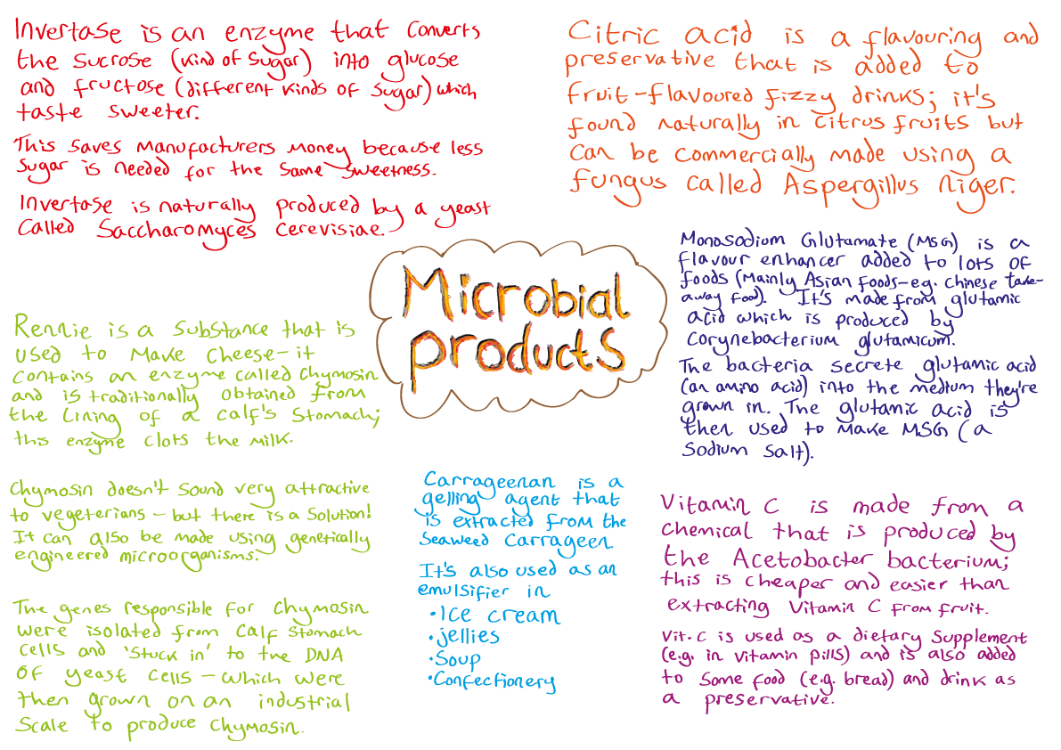 Microbial Products Image