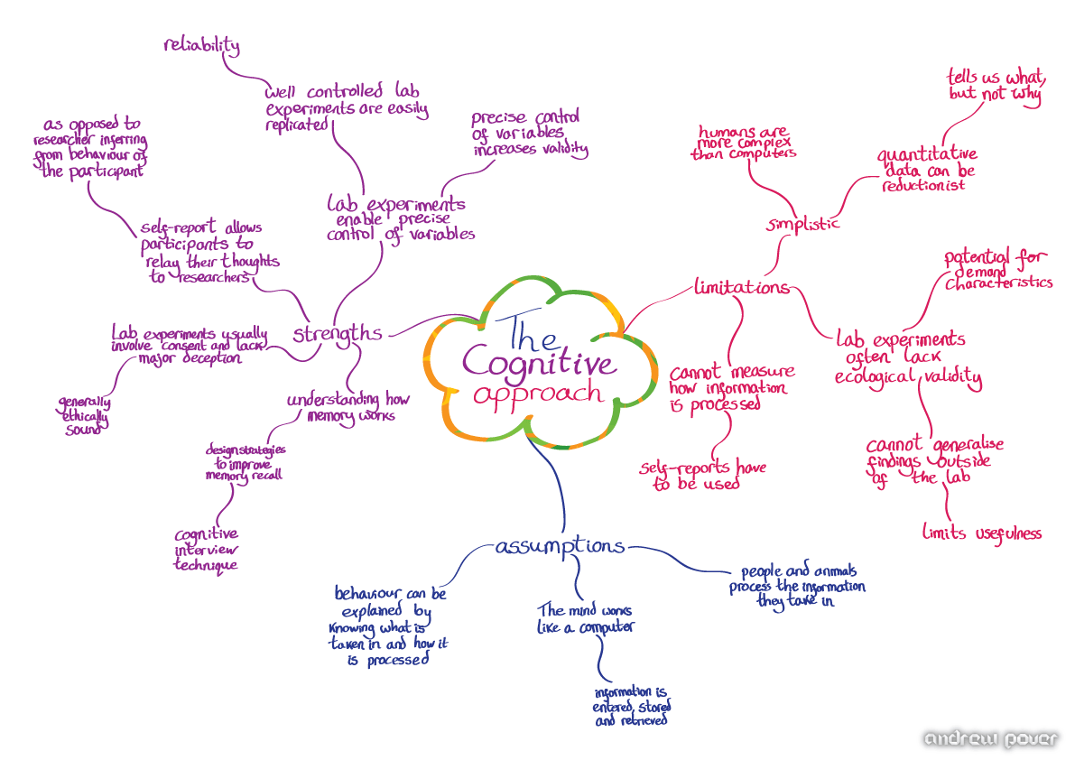 history of cognitive psychology essay Cognitive psychology: history  one of the first areas to benefit from the cognitive revolution was pattern recognition, the study of how.